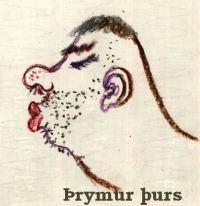 Þrymur þurs