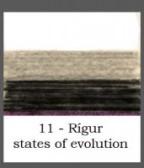 Rígur states of evolution