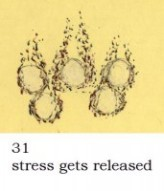 stress gets released