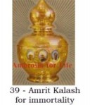Amrit Kalash for immortality