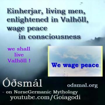 Einherjar - living men, enlightened in Valhöll - wage peace in consciousness