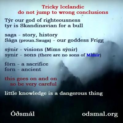 Tricky Icelandic - do not jump t wrong conclusions