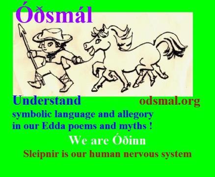 We are Óðinn - Sleipnir is our human nervous system