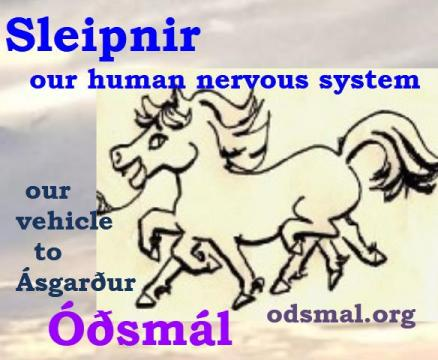 Sleipnir - our human nervous system is our vehicle to Ásgarður